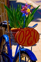Bicycle (julesnene) Tags: california travel blue bicycle welcome cambria openforbusiness 50d bluebicycle canoneos50d canon50d julesene idliketoridemybicyclewithyou
