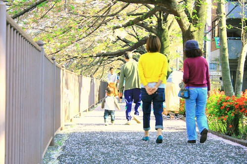 町田樹 画像12