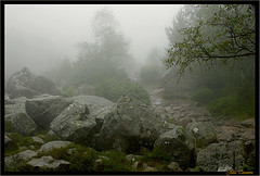 04_Path (Ju-ta) Tags: norway norge preikestolen