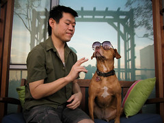 peace. (sgoralnick) Tags: dog sunglasses sienna cuuuuuute pck g9 phillipckim canong9