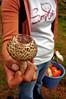 Frutos del bosque (David Morales) Tags: mushroom méxico veracruz hongo davidmorales frutosdelbosque