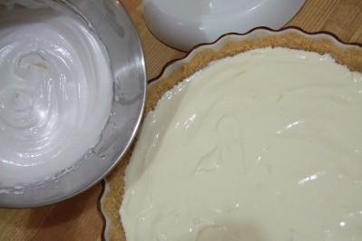Kitchen Aid Lemon Ice Receipe