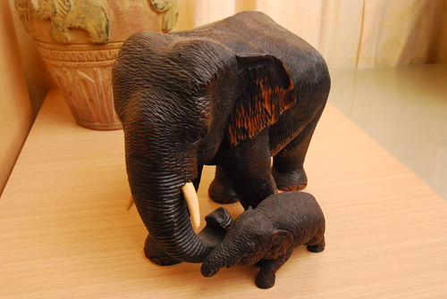 Our Elephant Collection