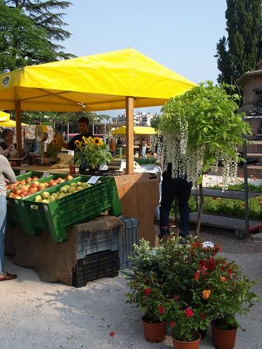 Trento, mercato biologico di Piazza Dante.