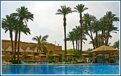 (891) SOFITEL KARNAK LUXOR Hotel / Egypt (unicorn 81) Tags: africa blue water pool architecture swimming geotagged hotel northafrica egypt palm egyptian egipto luxor 2009 gypten egitto egypte reise egypten rundreise roundtrip egipt gypte mapegypt misr nordafrika egypttrip april2009 gypten aegyptus  gyptusintertravel gyptenreise schulzaktivreisen sofitelkarnakluxorhotel hotelsofitelkarnakluxor meinjahr2009