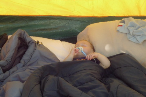 Jack napping in the tent