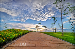 22 nuvali in HDR 05.22.09 (au.lim) Tags: road trees light sky pavement ultrawide hdr uwa photoshopcs4 tokina1116mm nuvali