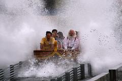 Pilgrims Plunge 2009