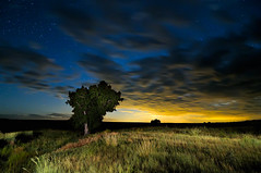 Moonset on the Central Shortgrass Prairie (Fort Photo) Tags: light sky tree nature grass night clouds painting stars landscape star nikon bravo colorado glow searchthebest weld led moonlit co moonlight astronomy grasses prairie grassland 2009 moonset grasslands afterdark neco csp d300 pawnee lightpaint centralshortgrassprairie aplusphoto