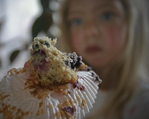 bluberrymorning-2