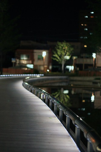 夜のさんぽ
