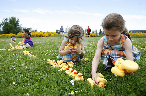 Ducks and madras (Seattle Times photo)