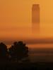 ... il lavoro dell'uomo (FranK.Dip) Tags: desktop wallpaper fog italia alba nebbia salento puglia brindisi trattore mattino tralicci sfondo sfondi agricoltura cammino centraletermoelettrica tuturano concorsofotograficonazionale frankdip localitàcerano menzionespeciale centralefedericoii salviamolapuglia 4°edizione