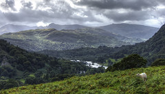 Cumbria: Distant Hills (Tim Blessed) Tags: uk nature landscape countryside sheep lakes lakedistrict cumbria singlerawtonemapped