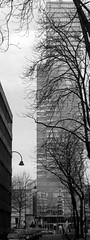 Cologne Vertical 7 (betablogga) Tags: bw white black deutschland cologne köln schwarz weis vertikal verticalgermany