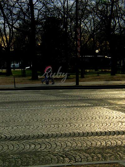 avenue des champs elysees_01