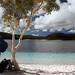 Lake Mckenzie - Australia Study Abroad