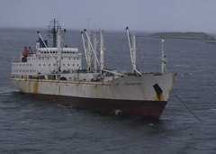 freighter anchored off Stanley, Falkland Islands