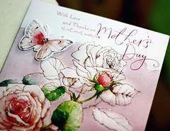 ماأحبك فوق الارض وبس ياكل الخلايق ♥ (eL reEem eL sro0o7e ♥) Tags: flower rose day f10 mothers card ♥ عيد الأم elreeem elsrooo7e baderuae