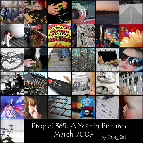 365 Monthly Mosaic for March 2009