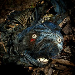 Found Blue Beast.. (Sea Moon) Tags: portrait dog face monster trash eyes woods decay jeans snaps bluedog woven textiles thrownaway