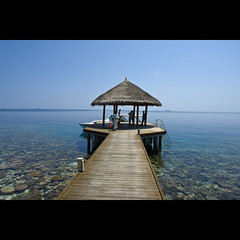 Arrival in Paradise (Lester Pulsford) Tags: coral snorkeling maldives kandholhu uniquemaldives simplymaldives
