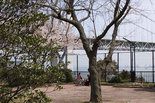 japan april 158