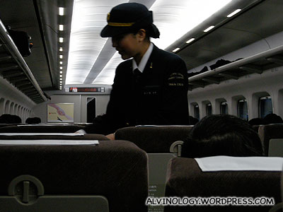 Pretty ticket inspector