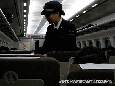 Pretty ticket inspector