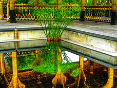 Reflection Pond (JGKphotos) Tags: canon general powershot g3 proudshopper awardtree jgkphotos