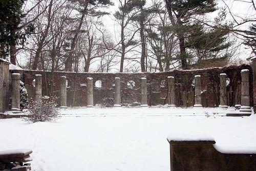 Alder Manor 21