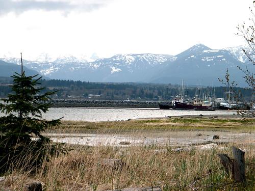 Filberg Park - Comox, BC