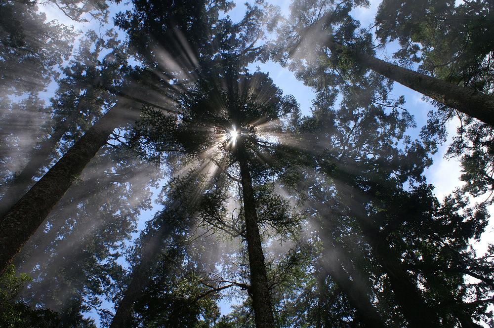 10-陽光滴漏雲稜處