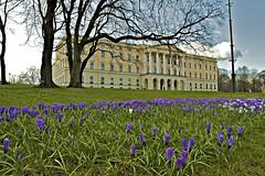 Slotte om våren