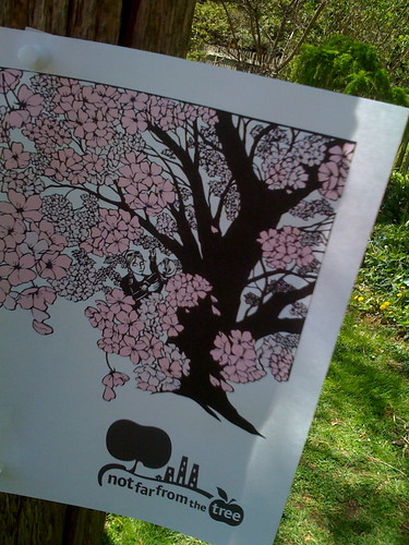 Yummy, frothy pink blossom poster