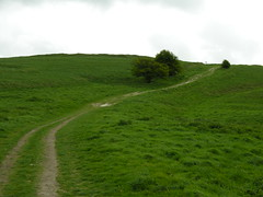 Path up Barbury Hill