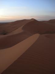 (Rafael Verissimo) Tags: sahara sand desert dunes morocco dunas marrocos desertosaara elrisani
