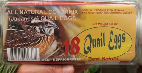 QuailEggs1