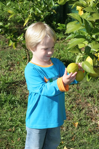 ripe yet?