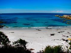 IMG_5817 (billdog) Tags: australia tasmania tassie downunder