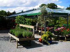 Garden Centre in Kilternan