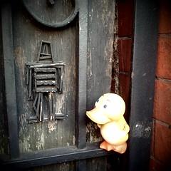 Stikman meets @GeoDuckie (ghbrett) Tags: art fun dc washington georgetown camerabag duckie iphone stikman geoduckie helgaeffect 20090222