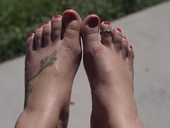 my feet (*BEAKA*) Tags: cute tattoo adorable lizard gecko tat toering paintedtoenails arizonaoldglasslegacylensolympus