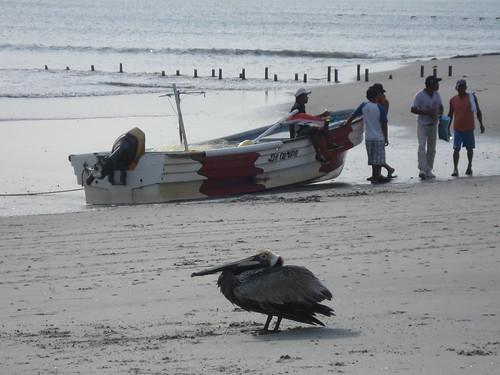 Gorgona Beach