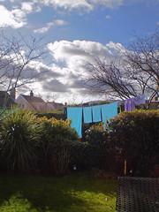 blue suburban towels (tinthumb) Tags: blue swansea towels suburb
