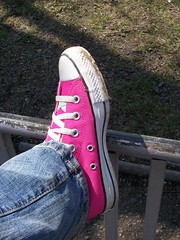 Dear Chuck, (BREananicOLE) Tags: shoes converse hightops kicks allstar chucks chucktaylors allstars