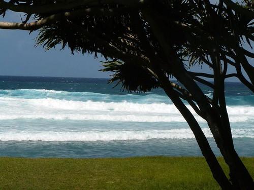 Vanuatu : Ile de Tanna #81 : whitesand