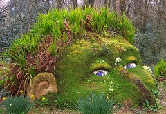 Head (Fizikal Rex) Tags: flowers sculpture plants face gardens lost cornwall head surreal heligan mycameraneverlies heliganslostgardens