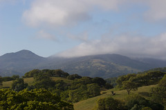 Fog in the hills Photo