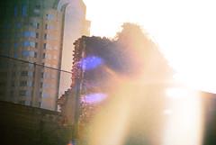 Strokes (louise brask) Tags: sun sunlight neworleans heavens
